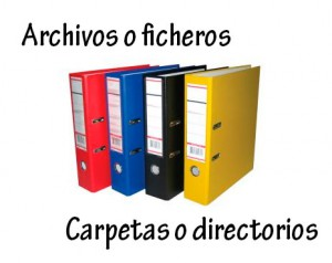 Organiza tus archivos